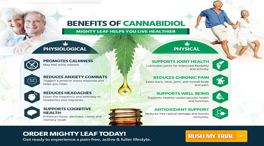 Mighty-Leaf-CBD-Oil-3
