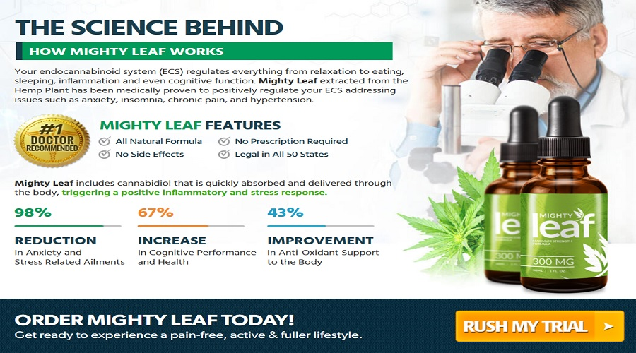 Mighty-Leaf-CBD-Oil-4